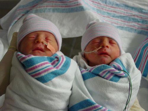 2003-newborns.JPG