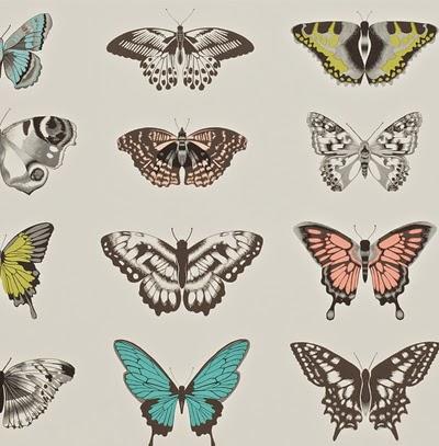 Harlequin's Butterflies
