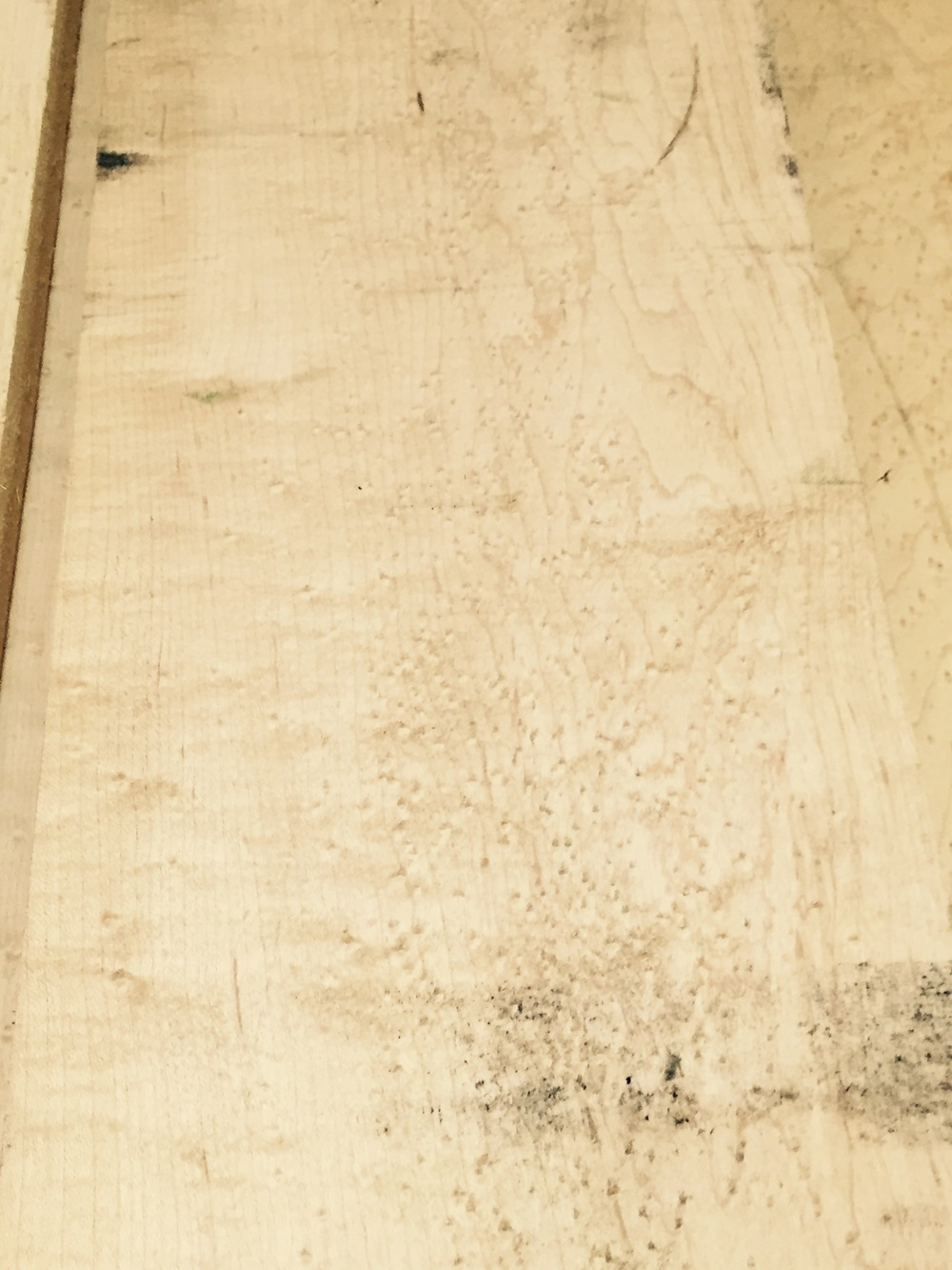 4/4 Birdseye Maple $8.25 / BF