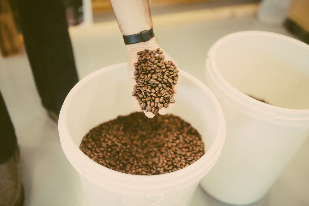 Photographs from Black Powder Roasting Co. in Mooresville, NC