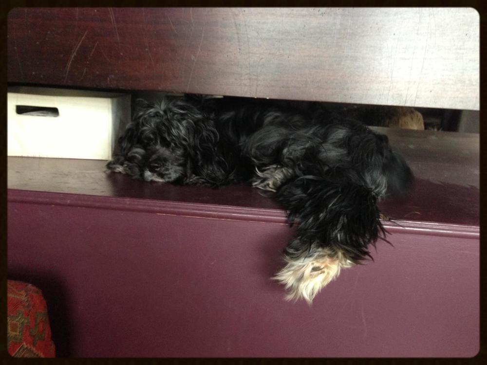 on the platform under our bed
