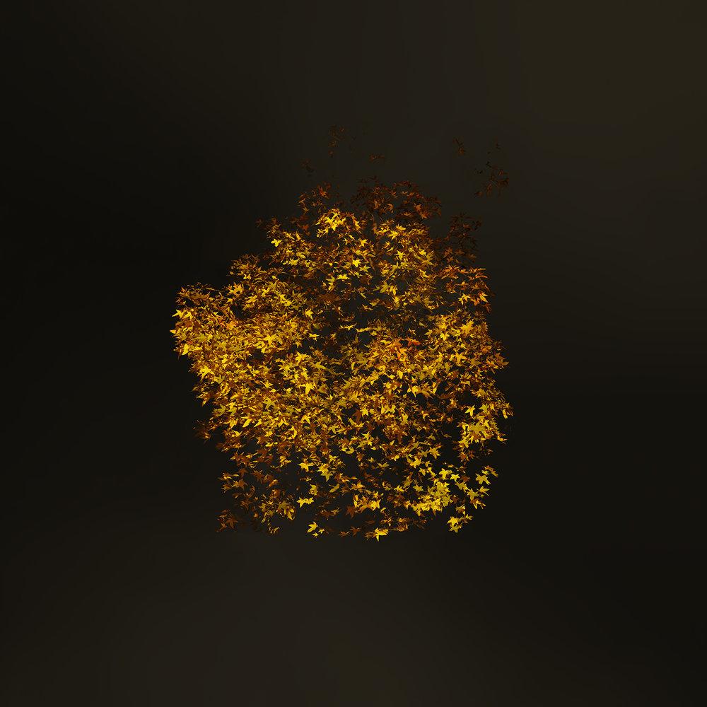 London Fields Yellow Leaf