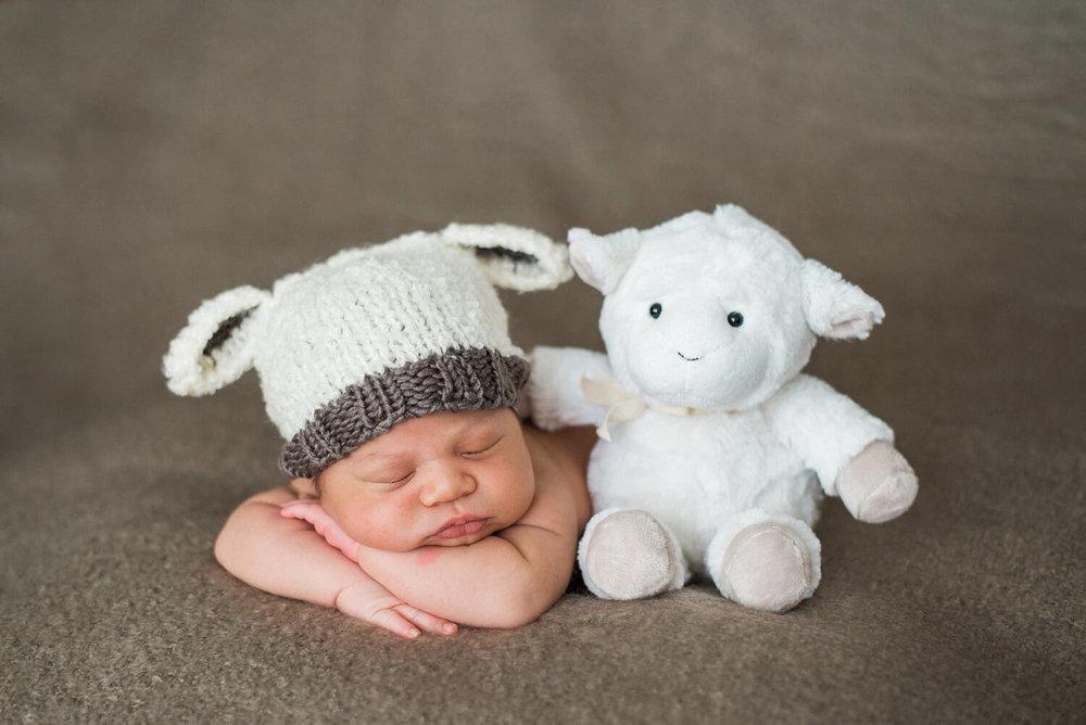 best-newborn-photographer-portland-oregon-sleeping-baby-boy-lamb-knit-hat-shelley-marie-photography-1.jpg