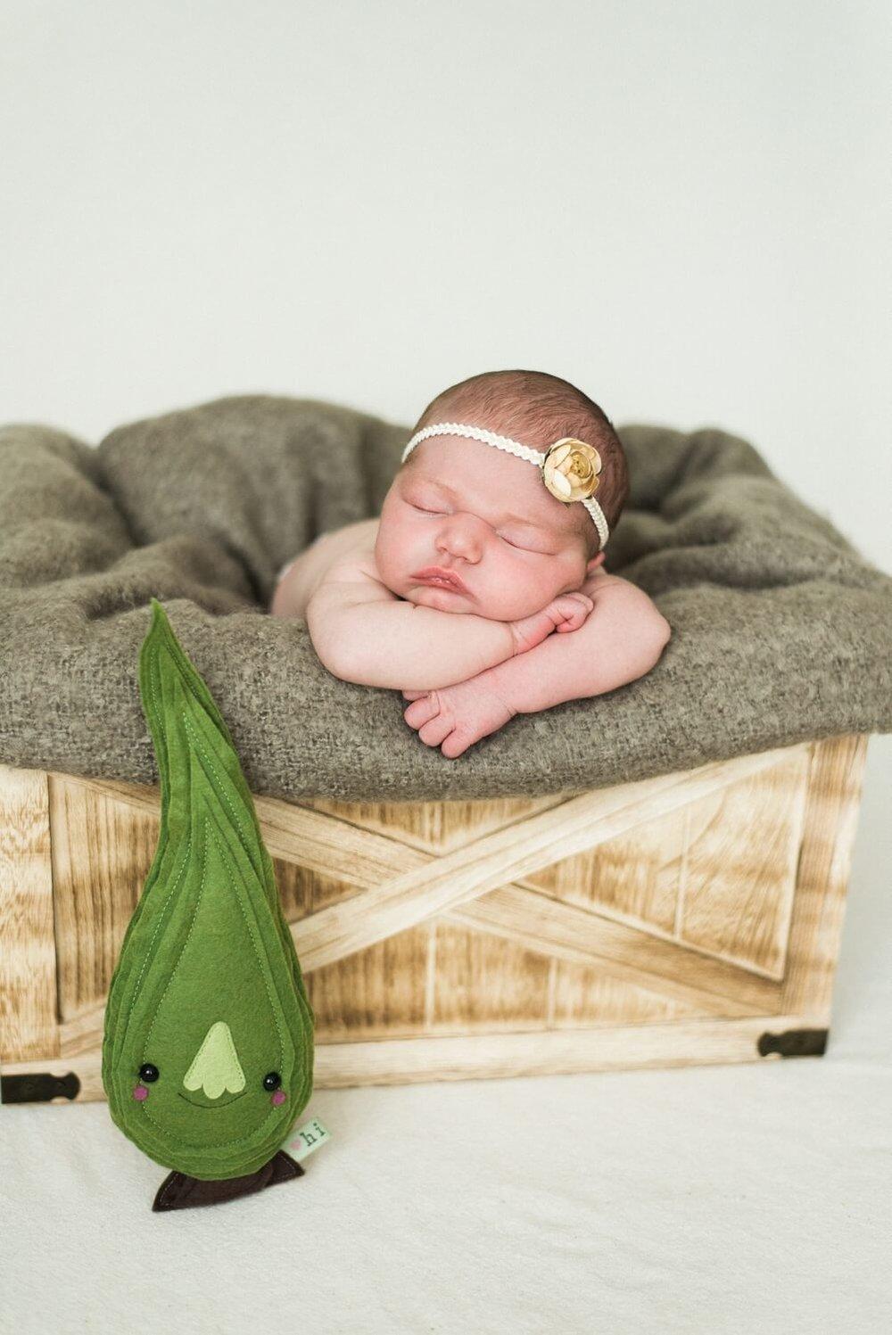 best-portland-oregon-newborn-photographer-sleeping-baby-girl-with-flower-headband-shelley-marie-photography-45.jpg