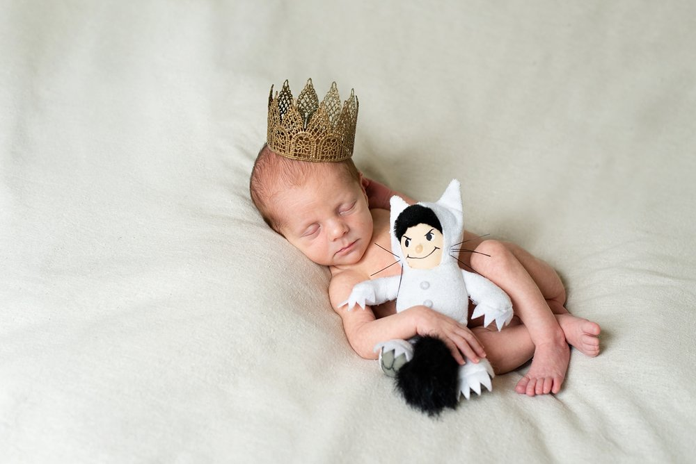 where-the-wild-things-are-newborn-session-twin-boys-portland-shelley-marie-photo-087_cr.jpg