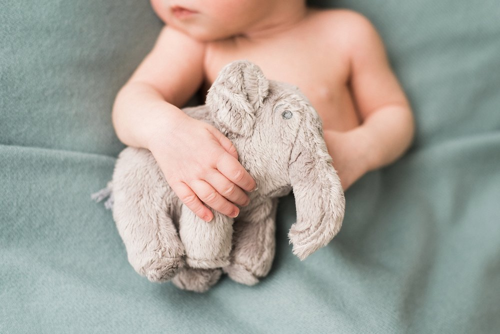 portland-newborn-session-baby-hands-elephant-shelley-marie-photo-092_cr.jpg