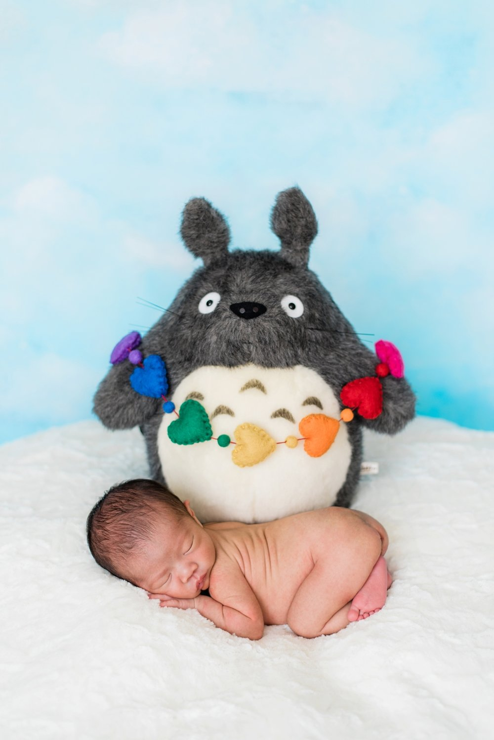 totoro-rainbow-baby-newborn-photos-portland-shelley-marie-photography-008_cr.jpg