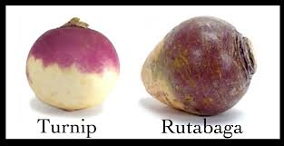 "Okay. This is also important. Here is Newfoundland, you'll hear us talk about turnip. A lot. And turnip must go in the pot. BUT when we say turnip, we mean Rutabaga. I think I was about 27 when I learned that the turnip I love isn't a turnip. The turnip we grow, not a turnip. Truth be told, I've never eaten a turnip. And yet, if you ask me my favourite vegetable, I'll tell you proudly that it's turnip. Cause 27 years of conditioning is hard to break. Plus, wouldn't it sound pretentious if I said ""If I could be any vegetable in the world, I'd be a rutabaga."" Or maybe pretentious isn't the word I mean either. ;)"