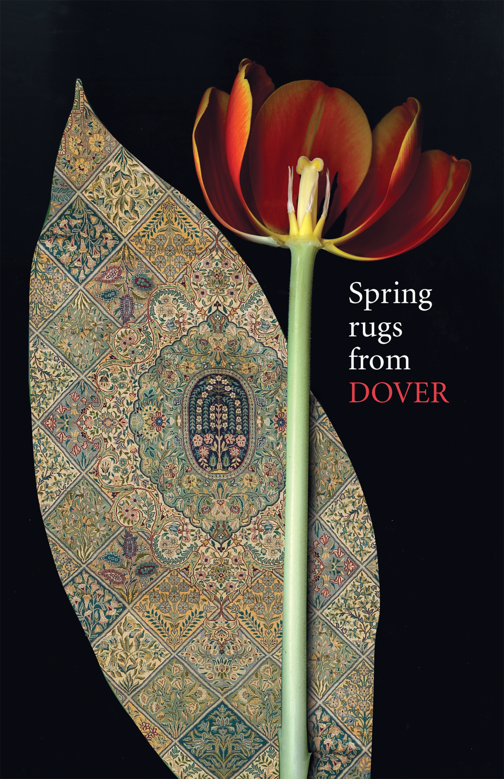 Dover_SpringAd#01 copy.png
