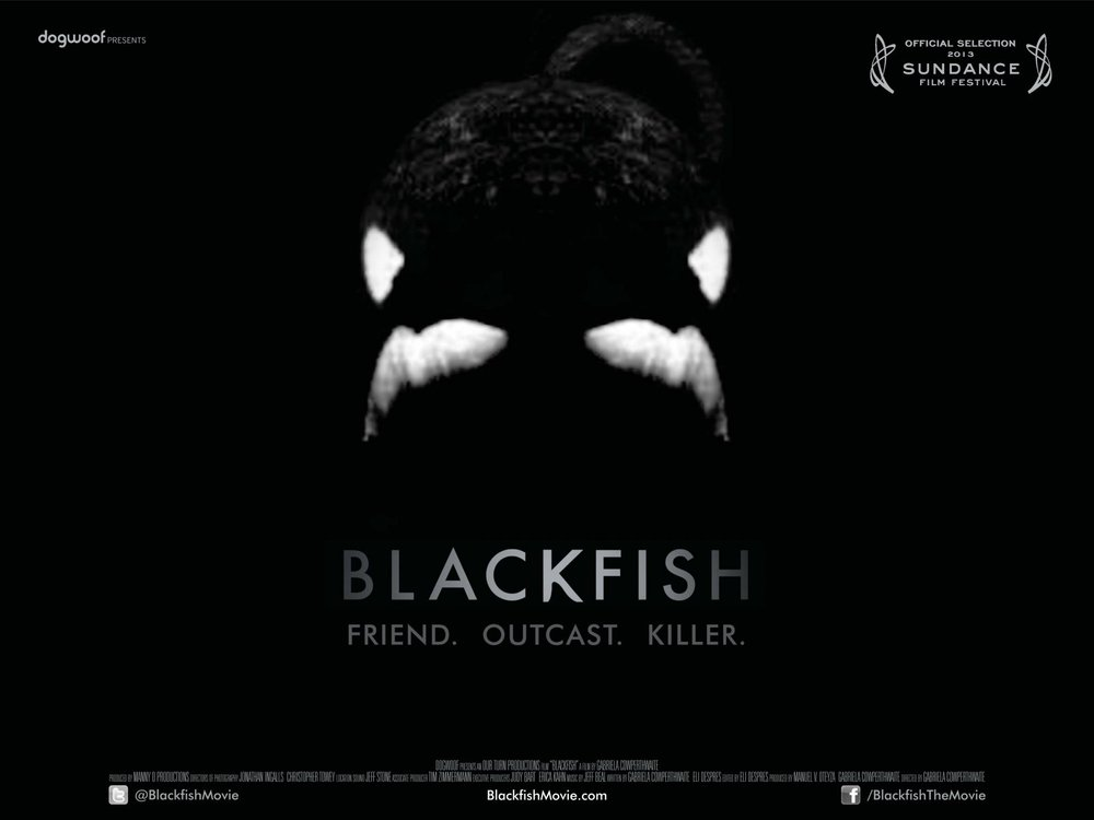 Dogwoof_Documentary_Blackfish_Quad_New_1600_1200_85.jpg