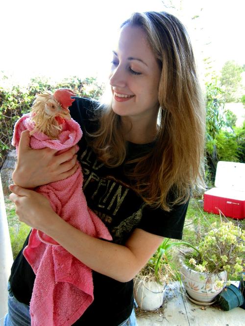 The Vegan Rabbit, with little Fluke, a rescued hen.