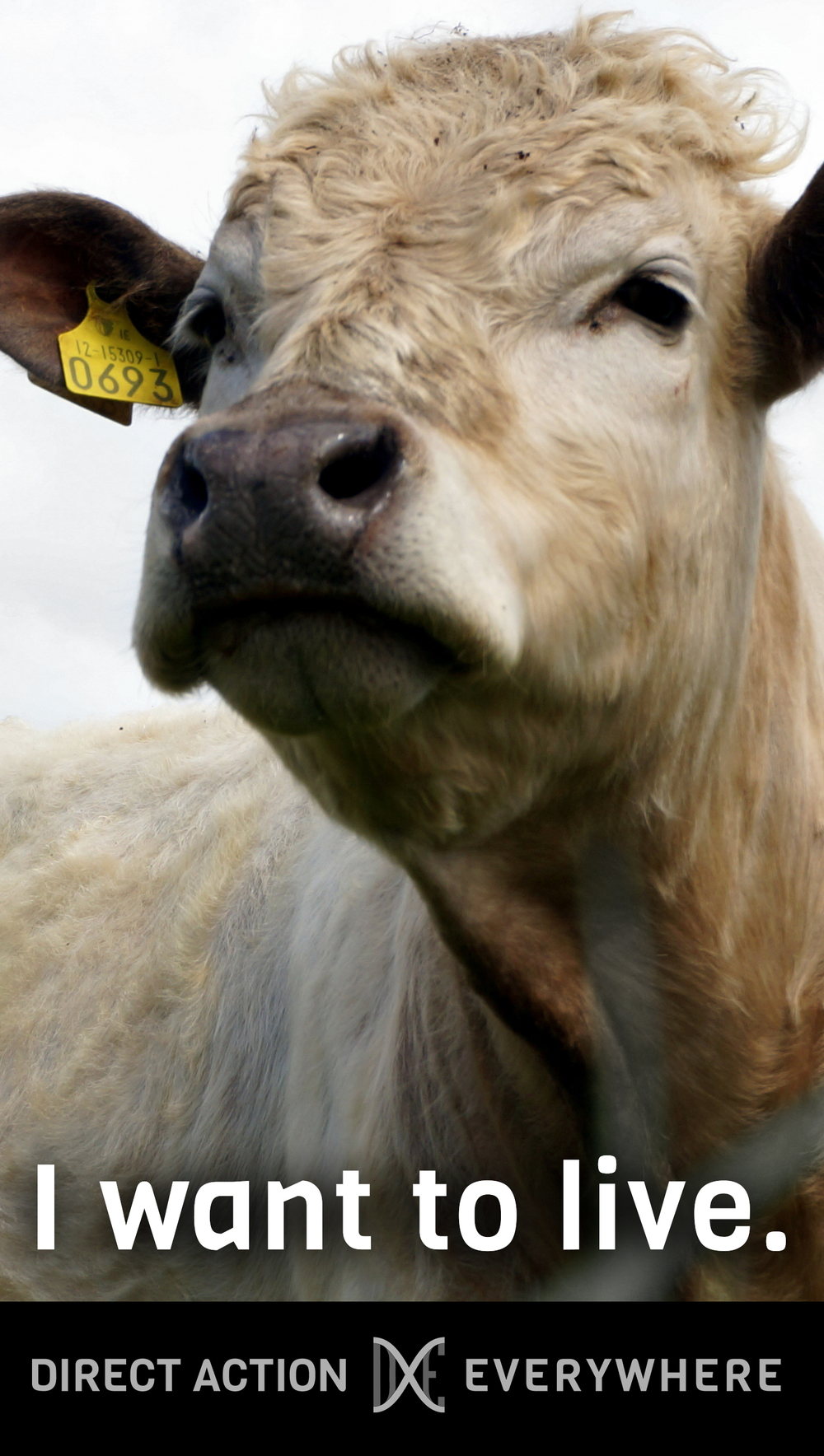 iwanttolive_cow.jpg