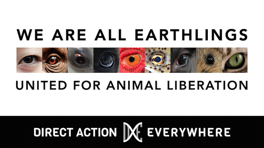 Earthlings Banner (Small)