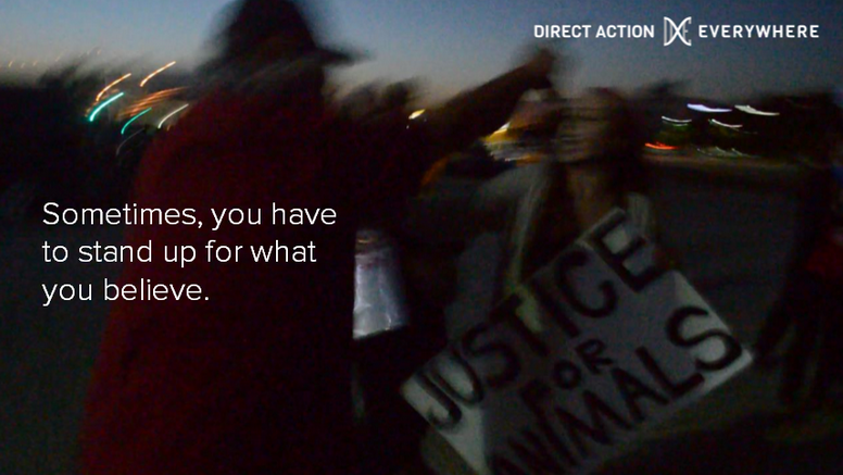 The attack on DxE activists in Southern California helped us build our confidence, perseverance, and solidarity.