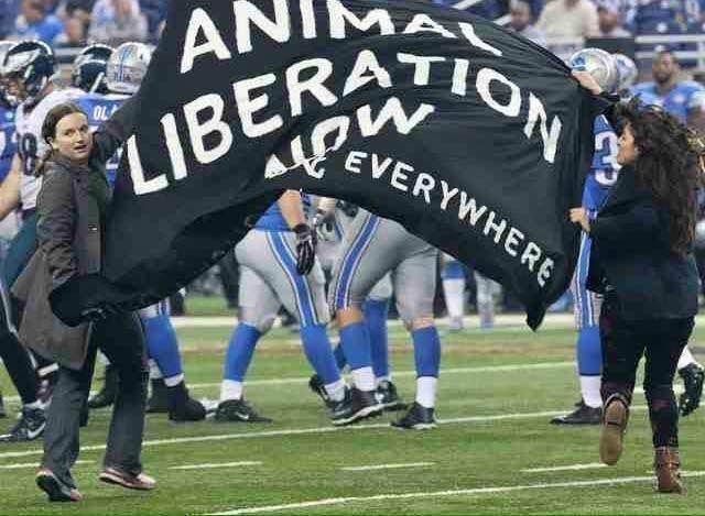 "Eva and fellow activist Araceli Rodriguez run onto the field at the National Football League's famous ""Turkey Bowl"" with an ""Animal Liberation Now"" sign"