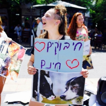 Naomi hanging with animal rights activists in Israel