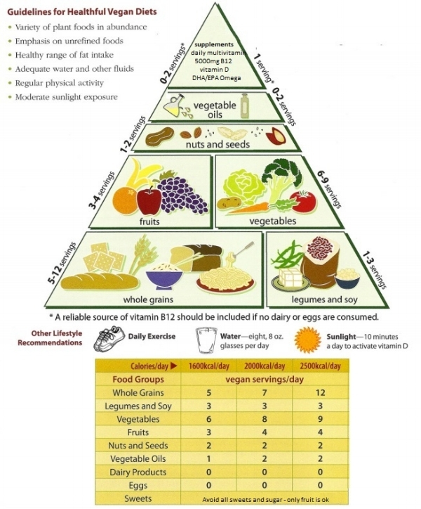 How to stay healthy in the long run direct action everywhere modified from the vegetarian food pyramid loma linda university school of public health 2008 httpvegetariannutritionfood pyramidpdf ccuart Image collections