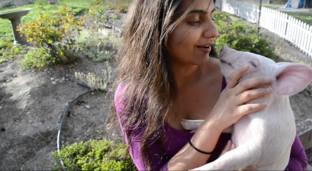Priya Sawhney with Miley, a pig rescued from Farmer John.