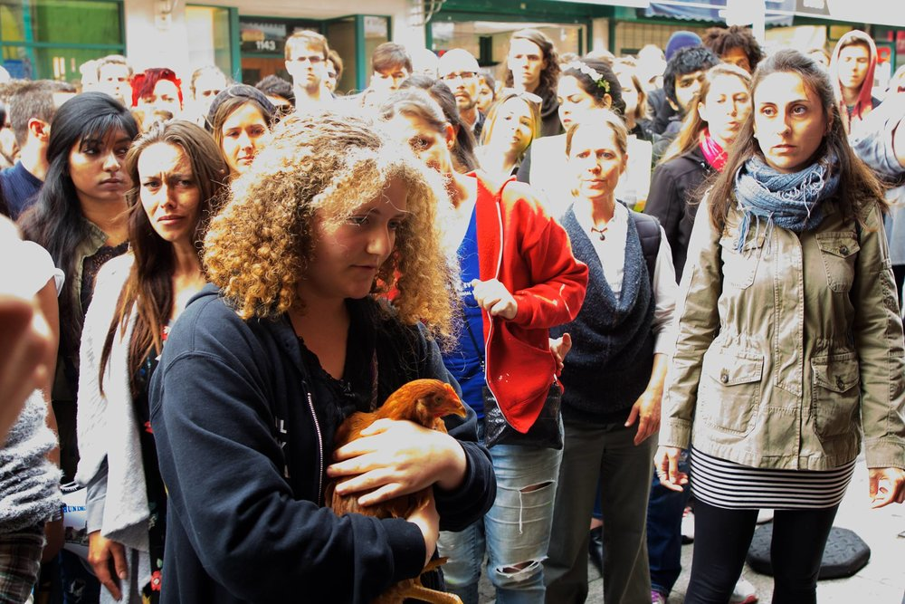 Zoe Rosenberg receives a hen for rescue from the slaughterhouse. Photograph by Michael Goldberg.
