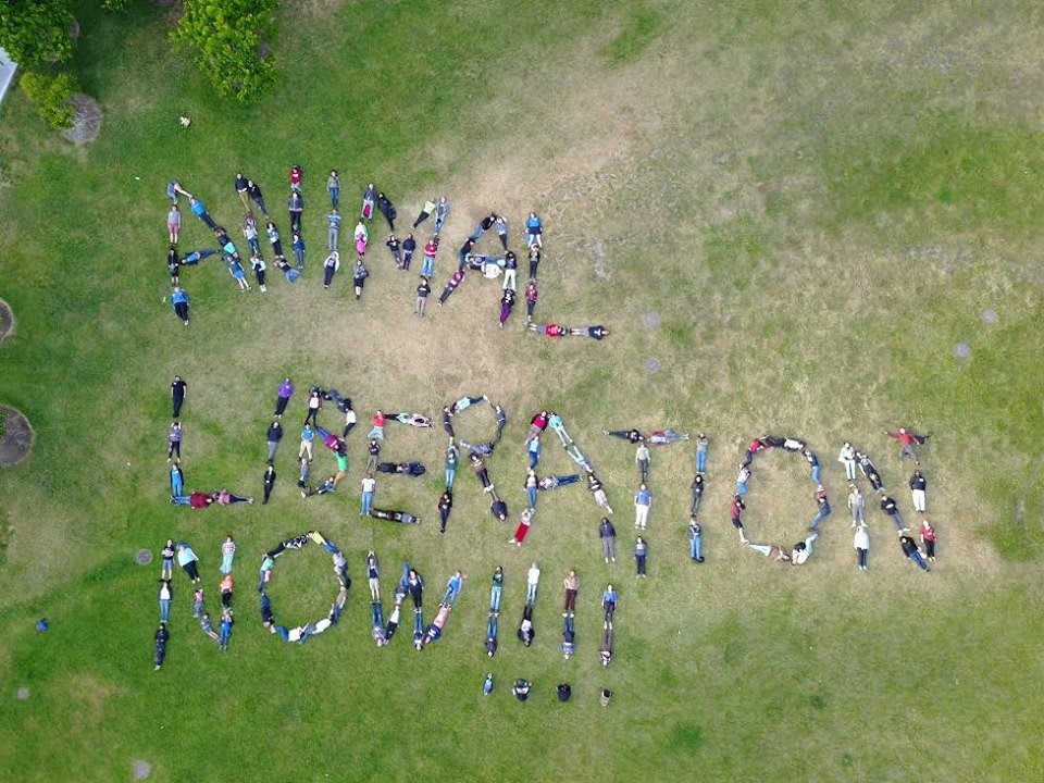 "DxE Forum attendees spell out ""Animal Liberation Now!!!!"""