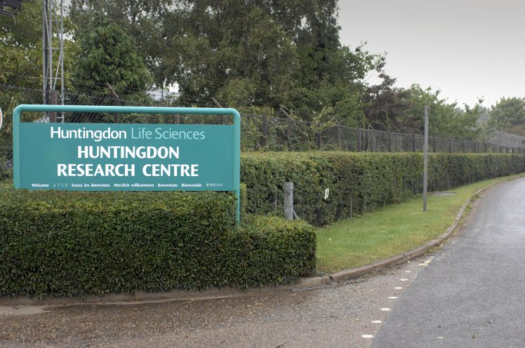 Animal rights activists have been working to shut down Huntingdon Life Sciences for decades.