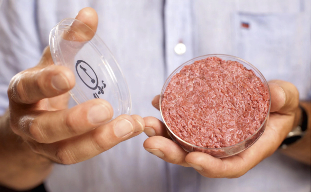Lab-grown burger.