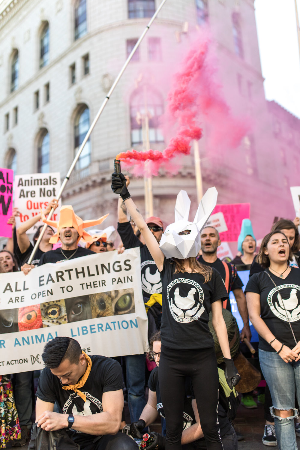 1,000 activists marched in San Francisco during the 2018 Animal Liberation Conference.