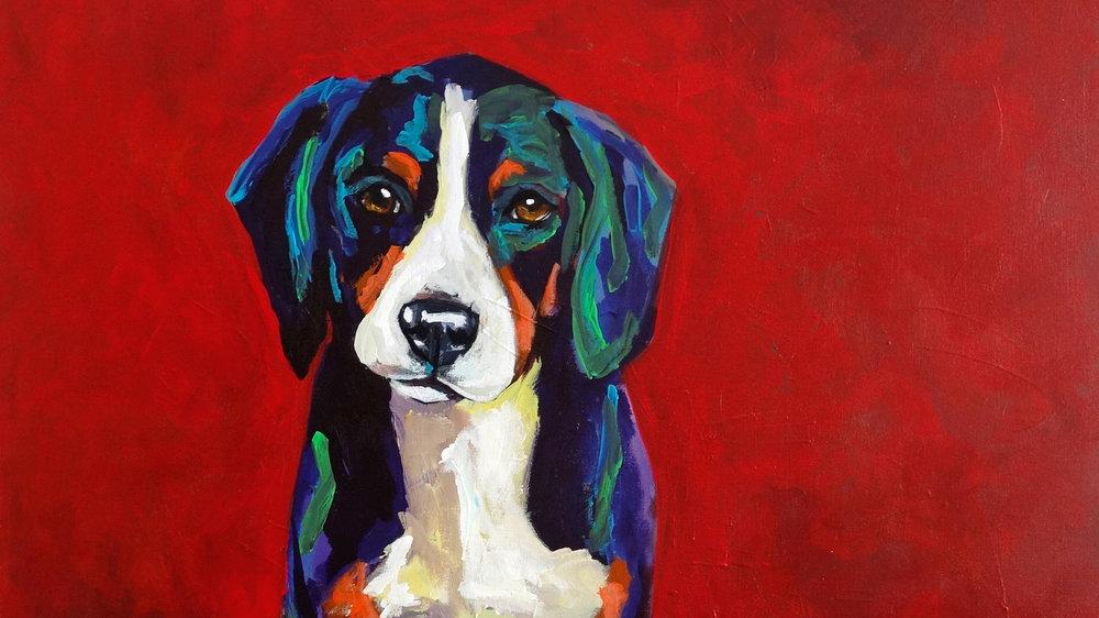 reddog.jpg