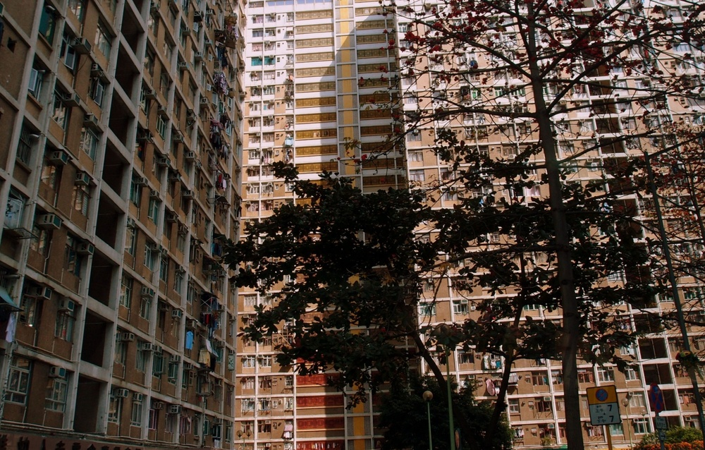 Another Public Housing Estate on Tsing Yi in the NT