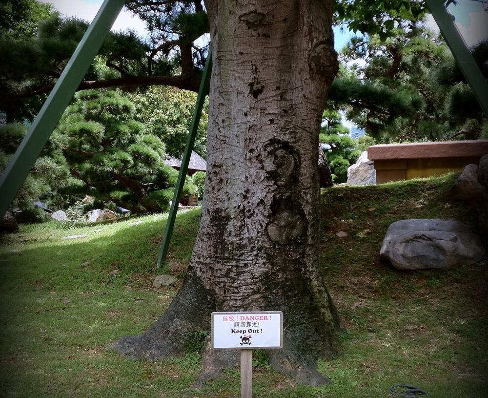 The evil seahorse tree at the Nan Lian Garden