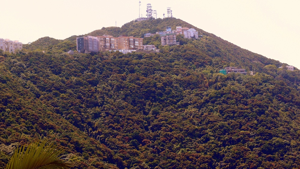 A very uncommon view of the Peak