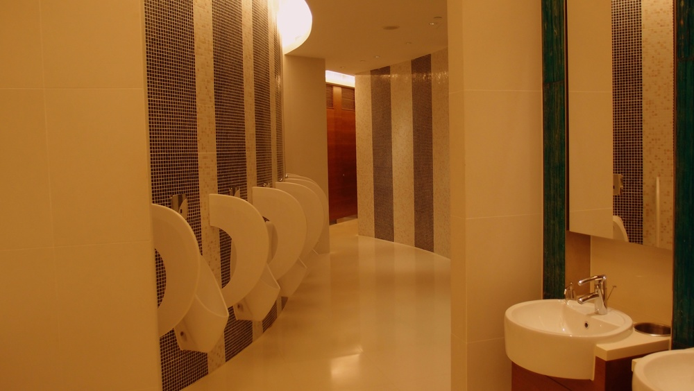I wish public toilets looked like this - they don't