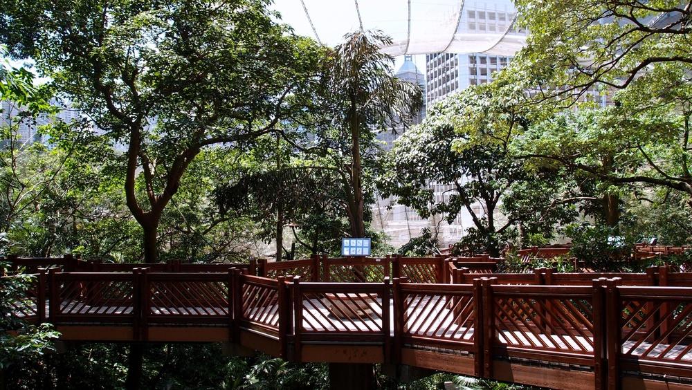 Said elevated walkway and info board