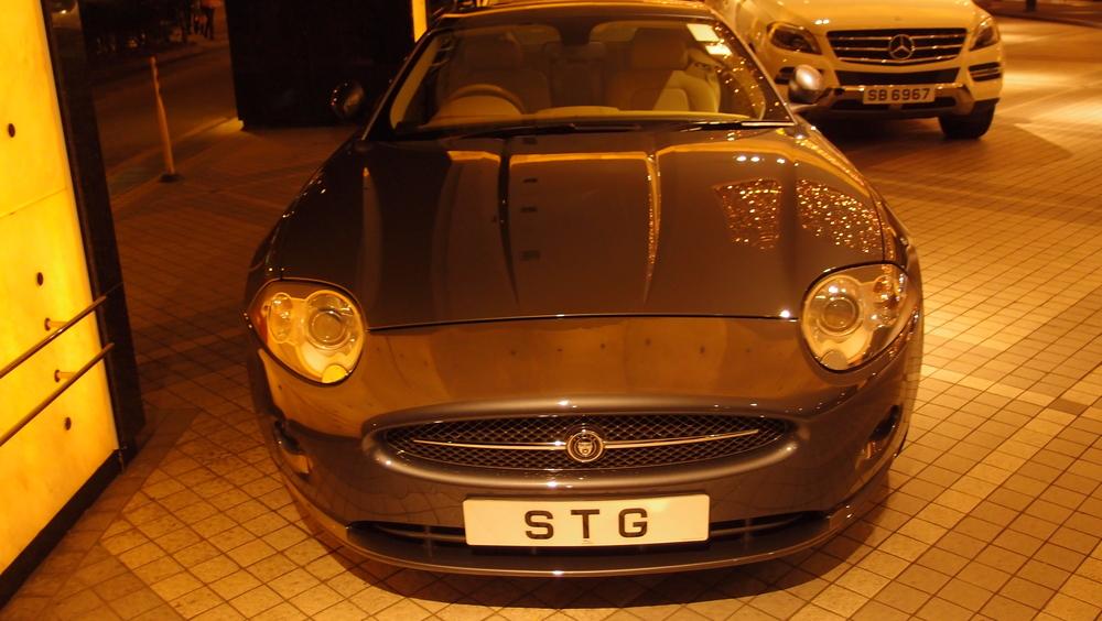 Nice Jaguar