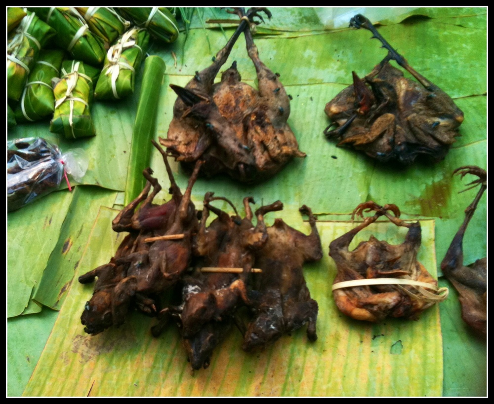 Ex Bats from Laos