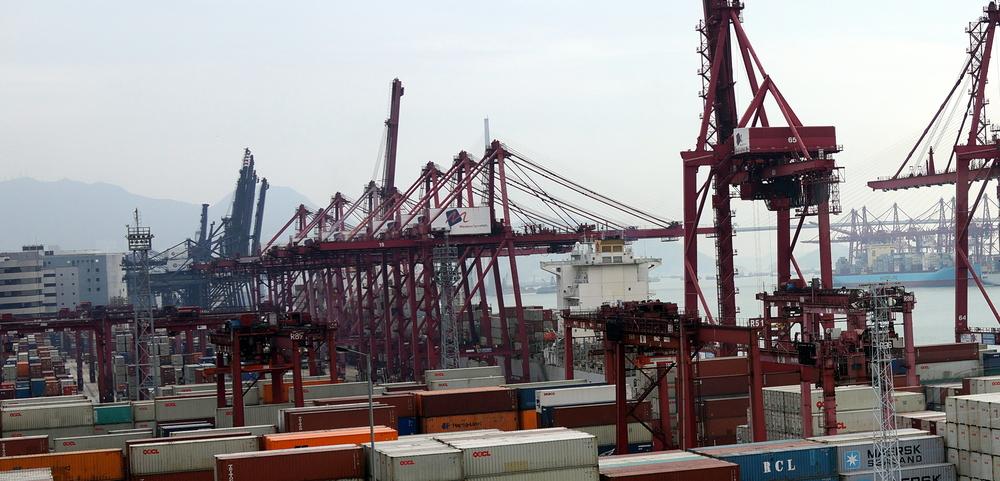 Lots of cranes