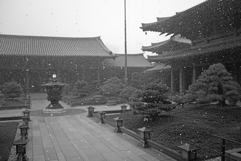 The Chi Lin Nunnery Hong Kong which is located in Diamond Hill, one of the few places that looks good in the rain,