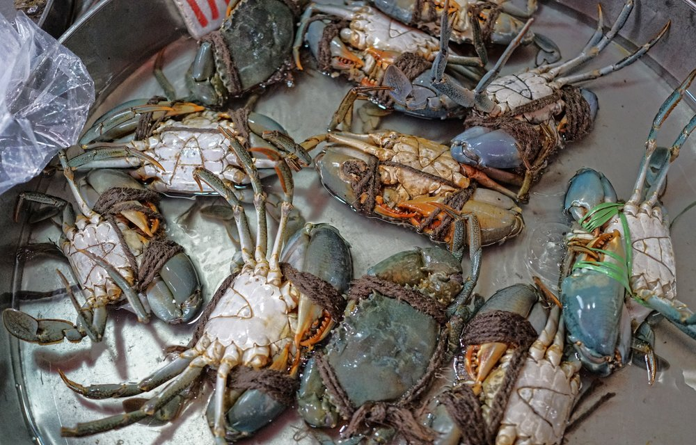 Oh dear, from zombies to crabs, these poor buggers are no longer of this world, Hong Kongers do love their crabs.   Go here for all of my images of Mongkok street market, a typical wet market in Hong Kong
