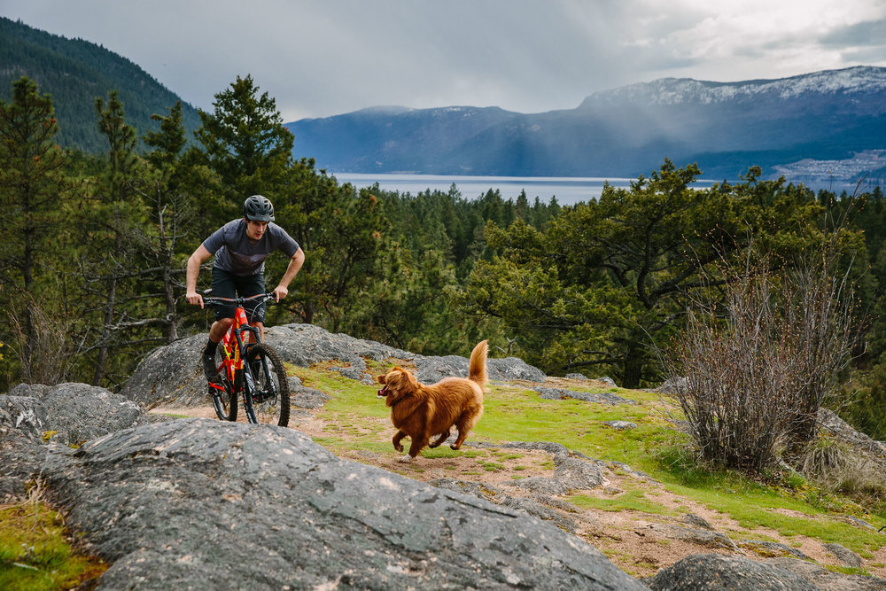 Stephen Matthews, Merlin (dog) / location: Vernon, BC, Canada