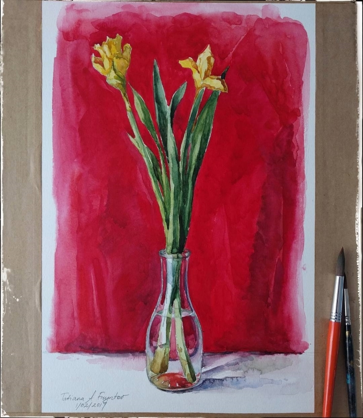 Daffodils on a red backdrop. 2017