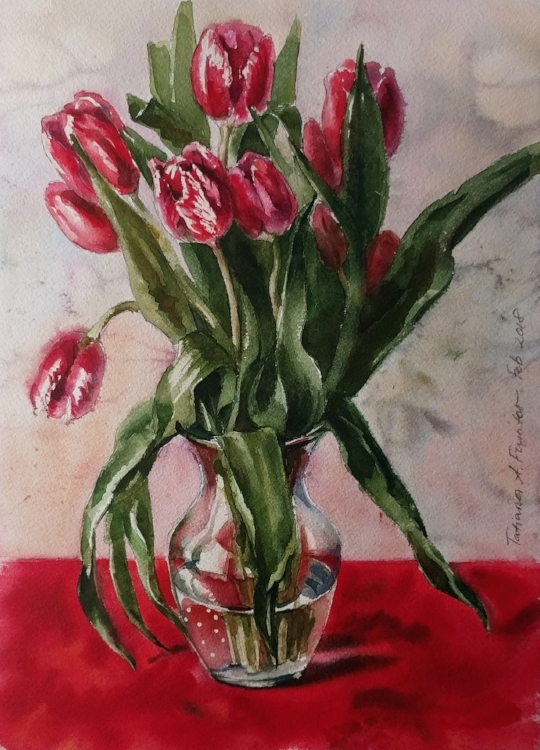 Stripy Red Tulips