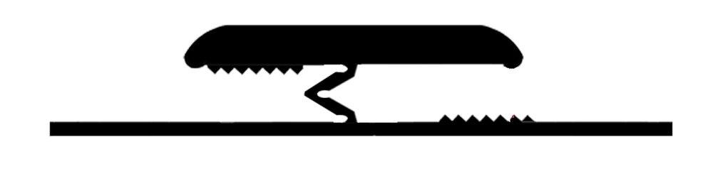 DoubleZ4 09.53.19.jpg
