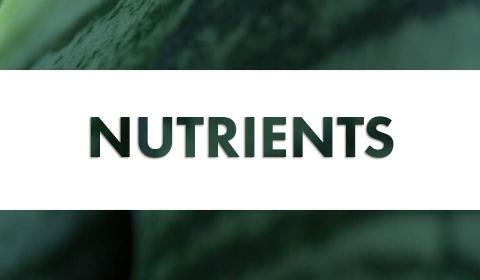 GH Nutrients
