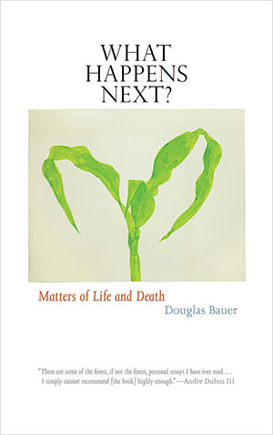 2014 Nonfiction:  What Happens Next?  by Douglas Bauer