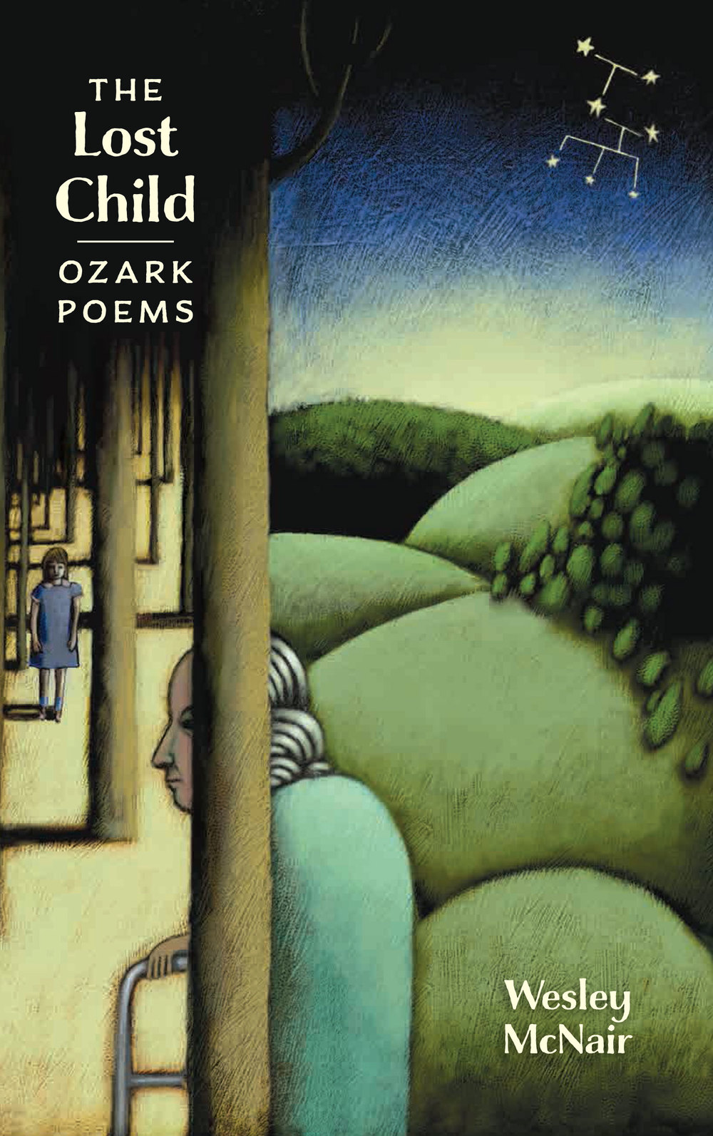 2015 Poetry:  The Lost Child: Ozark Poems  by Wesley McNair