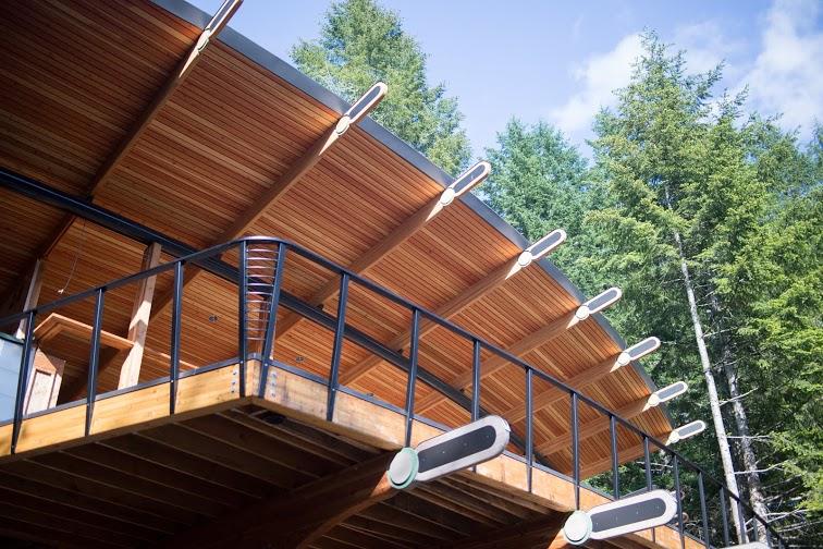 Oshatz House Roof 2