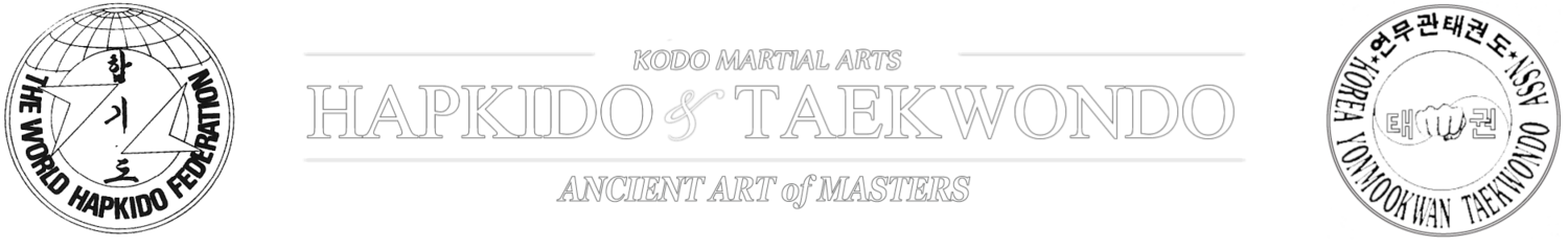 KODO MARTIAL ARTS - WOODBRIDGE