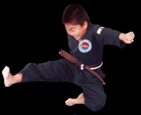 Michael Fly Kick