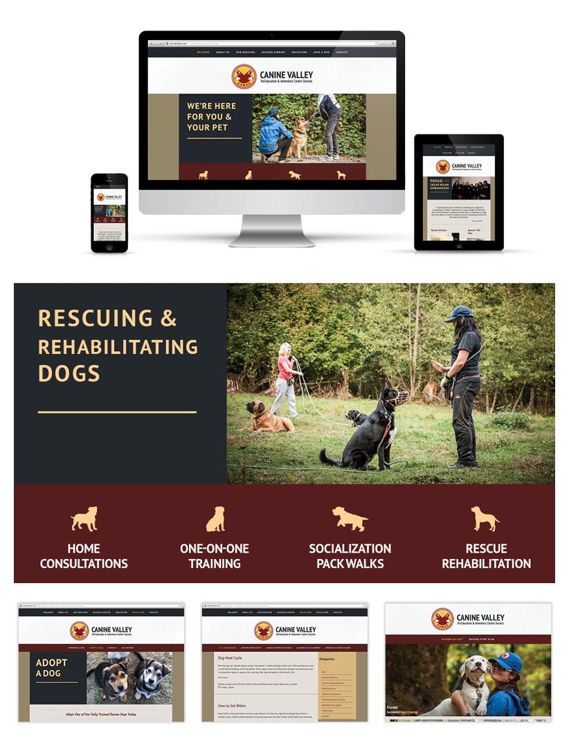 CanineValleyFeature2.jpg