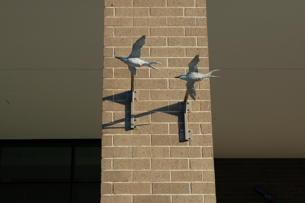 Estuary Plaza, Terns, detail
